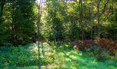 Trail Walk LONGPONT - en forêt de Retz_29_Longpont_la cave du Diable_A - Photo 111
