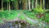 Trail Walk LONGPONT - en forêt de Retz_29_Longpont_la cave du Diable_A - Photo 3