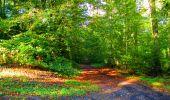 Trail Walk LONGPONT - en forêt de Retz_29_Longpont_la cave du Diable_A - Photo 70