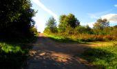 Trail Walk LONGPONT - en forêt de Retz_29_Longpont_la cave du Diable_A - Photo 180