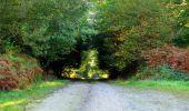 Trail Walk LONGPONT - en forêt de Retz_29_Longpont_la cave du Diable_A - Photo 60