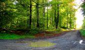 Trail Walk LONGPONT - en forêt de Retz_29_Longpont_la cave du Diable_A - Photo 84