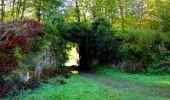 Trail Walk DAMPLEUX - en forêt de Retz_80_sur la Route Tortue et la Route Droite - Photo 19