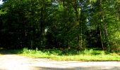 Trail Walk DAMPLEUX - en forêt de Retz_80_sur la Route Tortue et la Route Droite - Photo 22