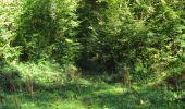 Trail Walk DAMPLEUX - en forêt de Retz_80_sur la Route Tortue et la Route Droite - Photo 202