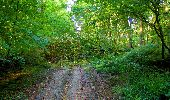 Trail Walk LONGPONT - en forêt de Retz_29_Longpont_la cave du Diable_A - Photo 68
