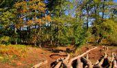 Trail Walk LONGPONT - en forêt de Retz_29_Longpont_la cave du Diable_A - Photo 119