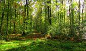Trail Walk LONGPONT - en forêt de Retz_29_Longpont_la cave du Diable_A - Photo 26