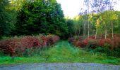 Trail Walk LONGPONT - en forêt de Retz_29_Longpont_la cave du Diable_A - Photo 61
