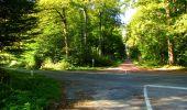 Trail Walk LONGPONT - en forêt de Retz_29_Longpont_la cave du Diable_A - Photo 131