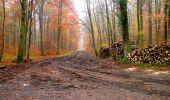 Trail Walk LONGPONT - en forêt de Retz_29_Longpont_la cave du Diable_A - Photo 19