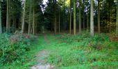 Trail Walk LONGPONT - en forêt de Retz_29_Longpont_la cave du Diable_A - Photo 9