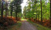 Trail Walk LONGPONT - en forêt de Retz_29_Longpont_la cave du Diable_A - Photo 250