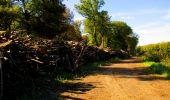 Trail Walk LONGPONT - en forêt de Retz_29_Longpont_la cave du Diable_A - Photo 164