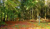 Trail Walk LONGPONT - en forêt de Retz_29_Longpont_la cave du Diable_A - Photo 14