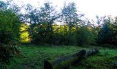 Trail Walk LONGPONT - en forêt de Retz_29_Longpont_la cave du Diable_A - Photo 57