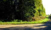 Trail Walk DAMPLEUX - en forêt de Retz_80_sur la Route Tortue et la Route Droite - Photo 21