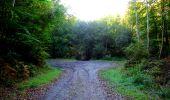 Trail Walk LONGPONT - en forêt de Retz_29_Longpont_la cave du Diable_A - Photo 67