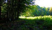 Trail Walk LONGPONT - en forêt de Retz_29_Longpont_la cave du Diable_A - Photo 162