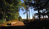 Trail Walk LONGPONT - en forêt de Retz_29_Longpont_la cave du Diable_A - Photo 117