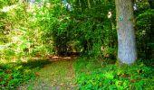 Trail Walk LONGPONT - en forêt de Retz_29_Longpont_la cave du Diable_A - Photo 161