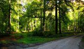 Trail Walk LONGPONT - en forêt de Retz_29_Longpont_la cave du Diable_A - Photo 71