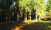 Trail Walk LONGPONT - en forêt de Retz_29_Longpont_la cave du Diable_A - Photo 18