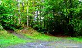 Trail Walk LONGPONT - en forêt de Retz_29_Longpont_la cave du Diable_A - Photo 66