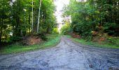 Trail Walk LONGPONT - en forêt de Retz_29_Longpont_la cave du Diable_A - Photo 63