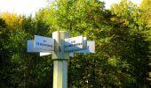 Trail Walk DAMPLEUX - en forêt de Retz_80_sur la Route Tortue et la Route Droite - Photo 190