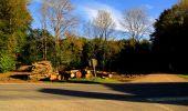 Trail Walk LONGPONT - en forêt de Retz_29_Longpont_la cave du Diable_A - Photo 77