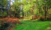 Trail Walk LONGPONT - en forêt de Retz_29_Longpont_la cave du Diable_A - Photo 248