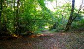 Trail Walk LONGPONT - en forêt de Retz_29_Longpont_la cave du Diable_A - Photo 99
