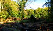 Trail Walk LONGPONT - en forêt de Retz_29_Longpont_la cave du Diable_A - Photo 78