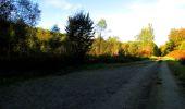 Trail Walk LONGPONT - en forêt de Retz_29_Longpont_la cave du Diable_A - Photo 62