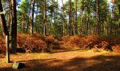 Trail Walk LONGPONT - en forêt de Retz_29_Longpont_la cave du Diable_A - Photo 218