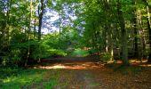 Trail Walk LONGPONT - en forêt de Retz_29_Longpont_la cave du Diable_A - Photo 100