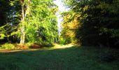 Trail Walk LONGPONT - en forêt de Retz_29_Longpont_la cave du Diable_A - Photo 44