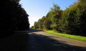 Trail Walk DAMPLEUX - en forêt de Retz_80_sur la Route Tortue et la Route Droite - Photo 281