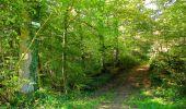 Trail Walk LONGPONT - en forêt de Retz_29_Longpont_la cave du Diable_A - Photo 155
