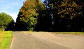 Trail Walk LONGPONT - en forêt de Retz_29_Longpont_la cave du Diable_A - Photo 86
