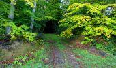 Trail Walk LONGPONT - en forêt de Retz_29_Longpont_la cave du Diable_A - Photo 58