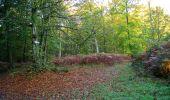 Trail Walk LONGPONT - en forêt de Retz_29_Longpont_la cave du Diable_A - Photo 10