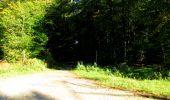 Trail Walk DAMPLEUX - en forêt de Retz_80_sur la Route Tortue et la Route Droite - Photo 20