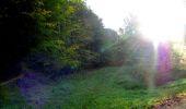 Trail Walk LONGPONT - en forêt de Retz_29_Longpont_la cave du Diable_A - Photo 42