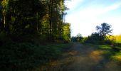 Trail Walk LONGPONT - en forêt de Retz_29_Longpont_la cave du Diable_A - Photo 56