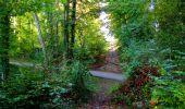 Trail Walk LONGPONT - en forêt de Retz_29_Longpont_la cave du Diable_A - Photo 52