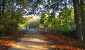 Trail Walk LONGPONT - en forêt de Retz_29_Longpont_la cave du Diable_A - Photo 33