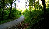 Trail Walk LONGPONT - en forêt de Retz_29_Longpont_la cave du Diable_A - Photo 50