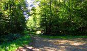 Trail Walk LONGPONT - en forêt de Retz_29_Longpont_la cave du Diable_A - Photo 115